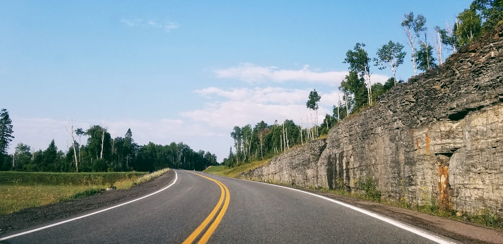 gray and white road near green tree lot
