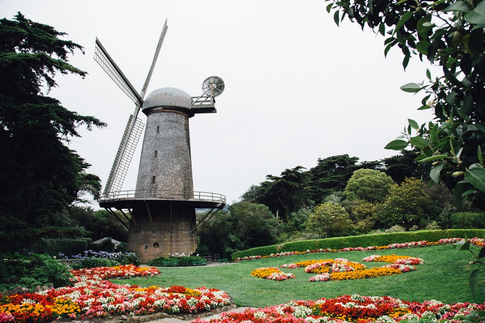 gray windmill surrounded with trees during daytime