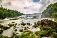 waterfalls near green leaf trees at daytime