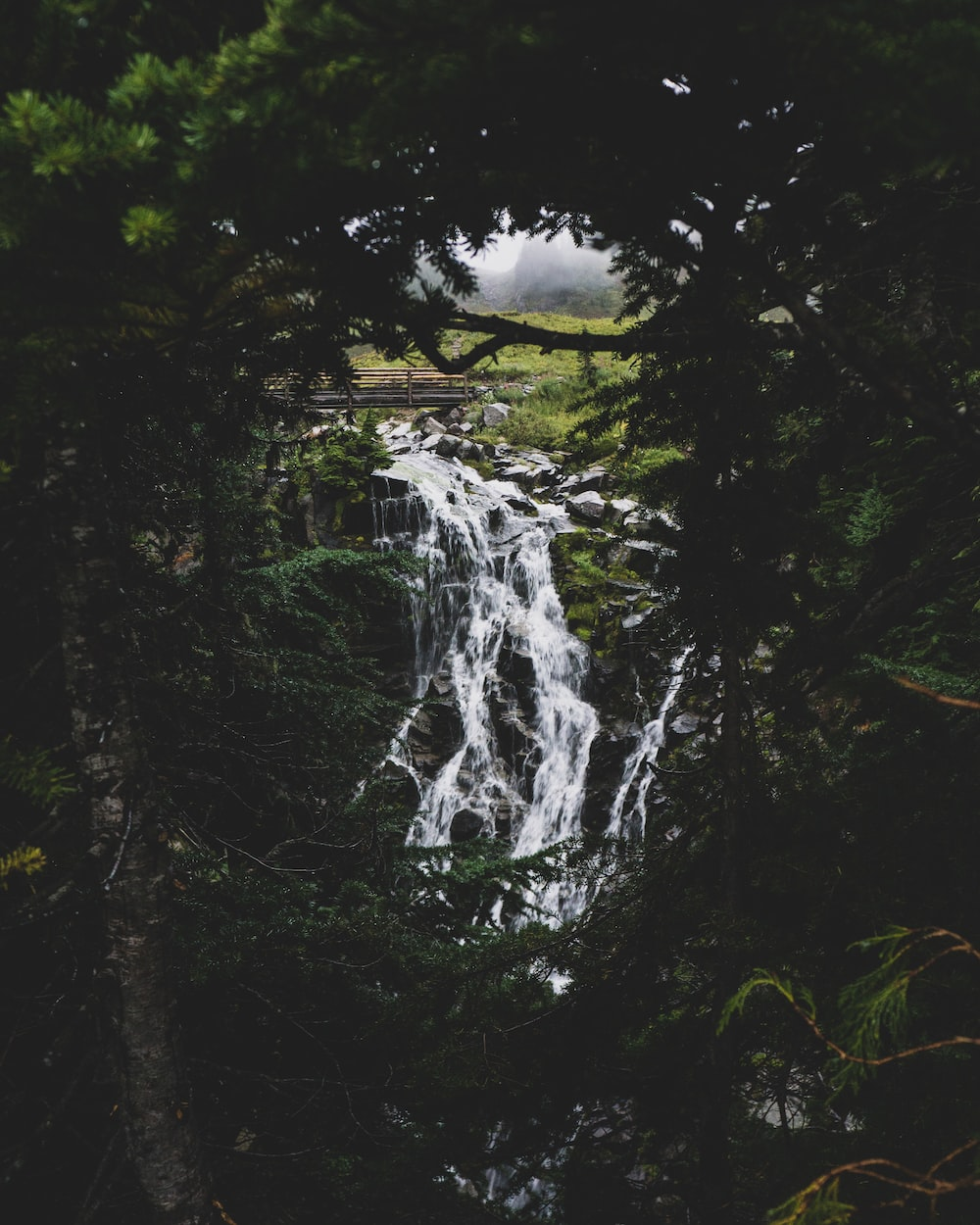 waterfalls near green leafed trees