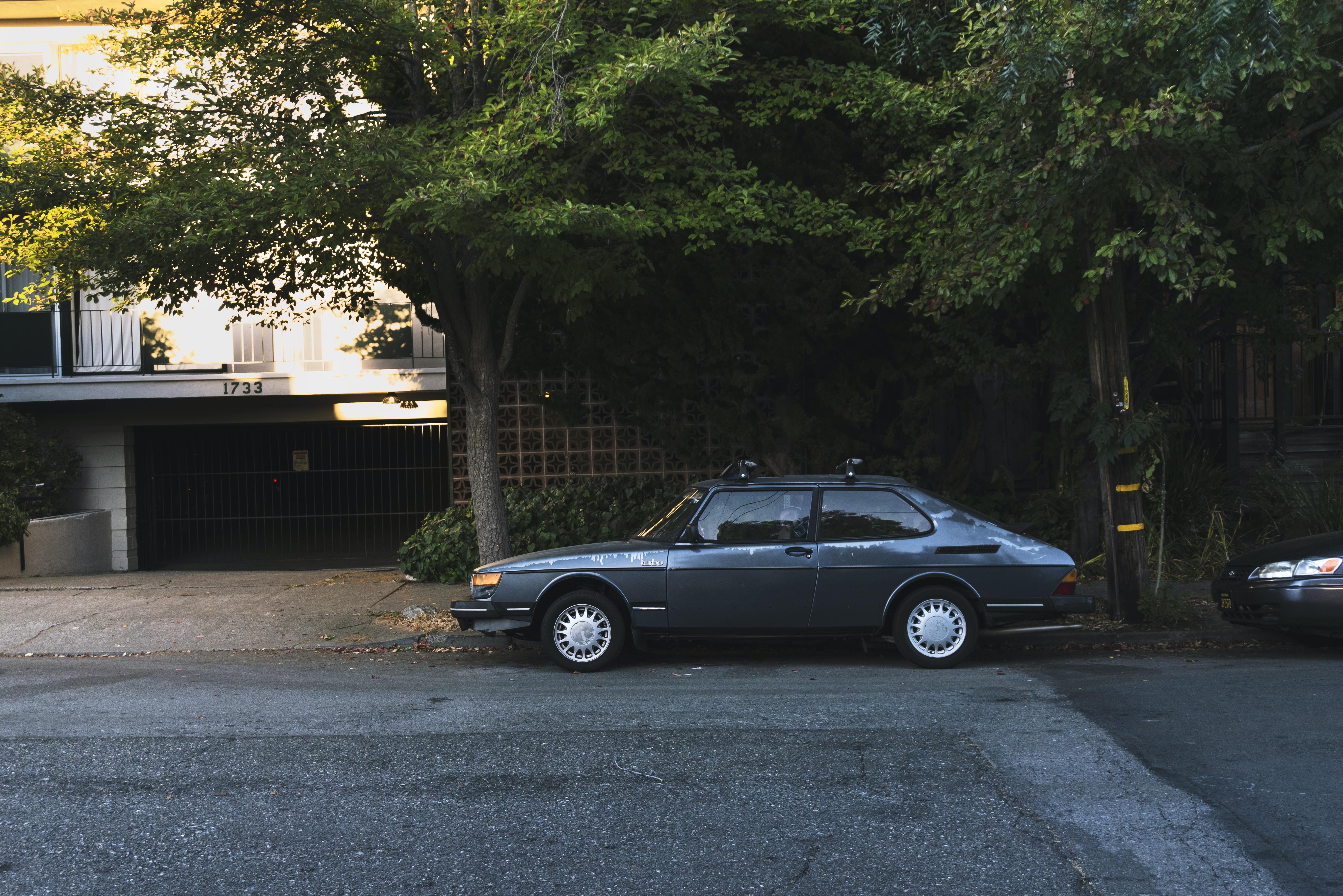 black sedan parked under the tree during daytime