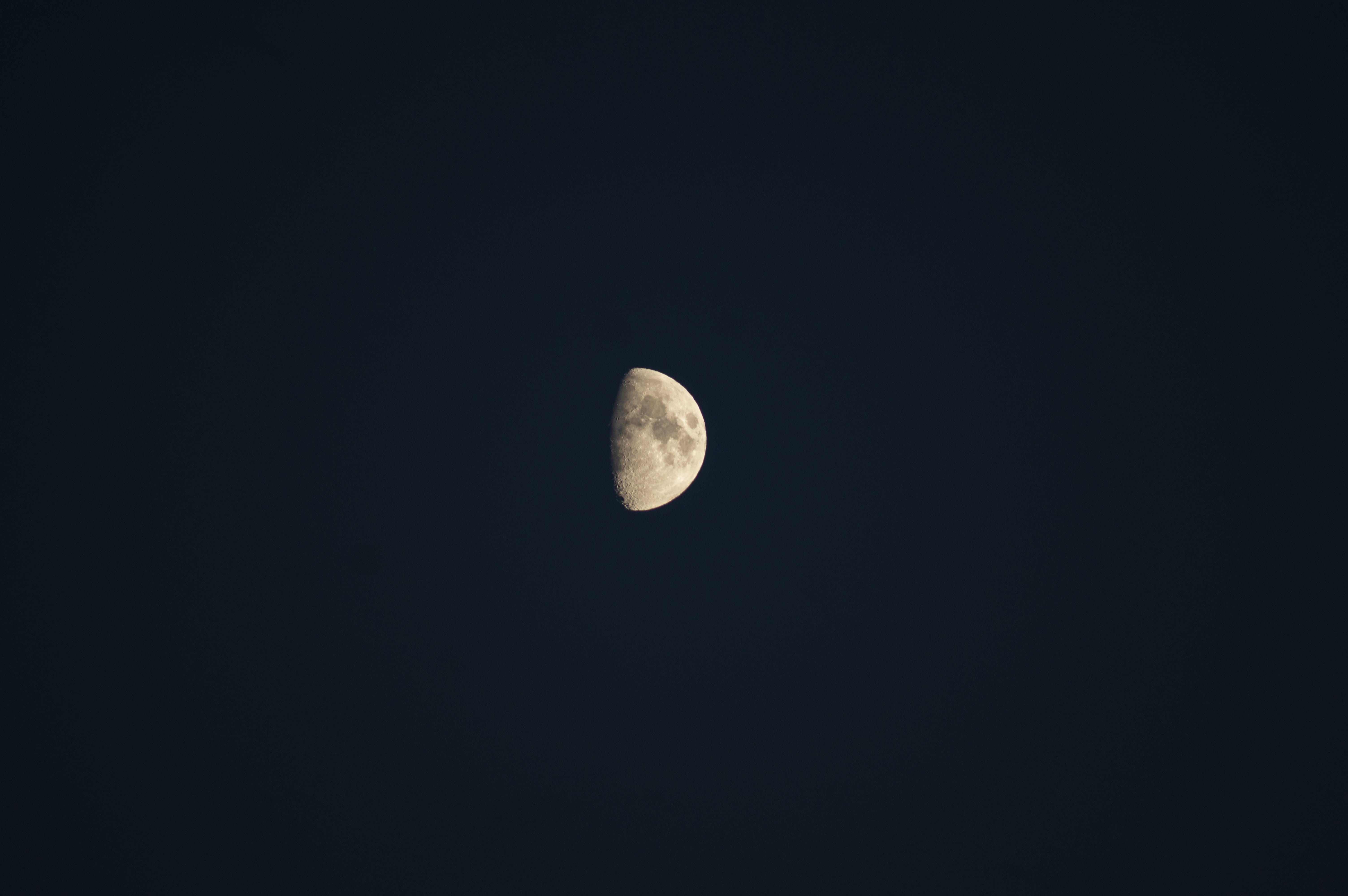 Moonlight Love stories