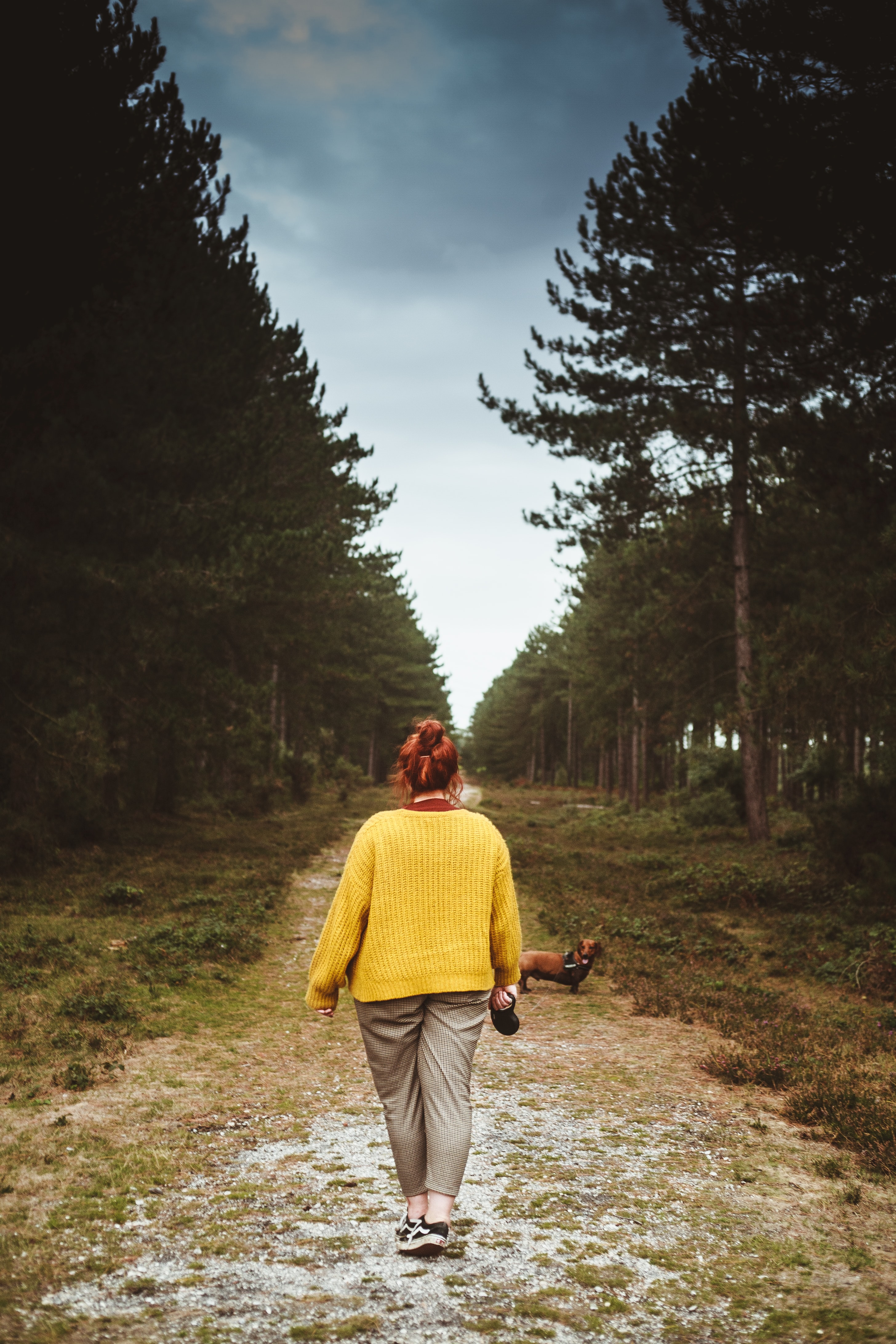 woman standing near adult brown dachshund on road at daytime