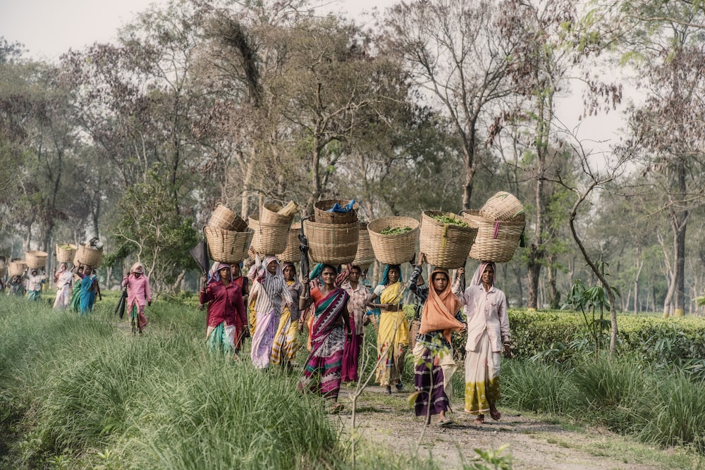 people carrying baskets