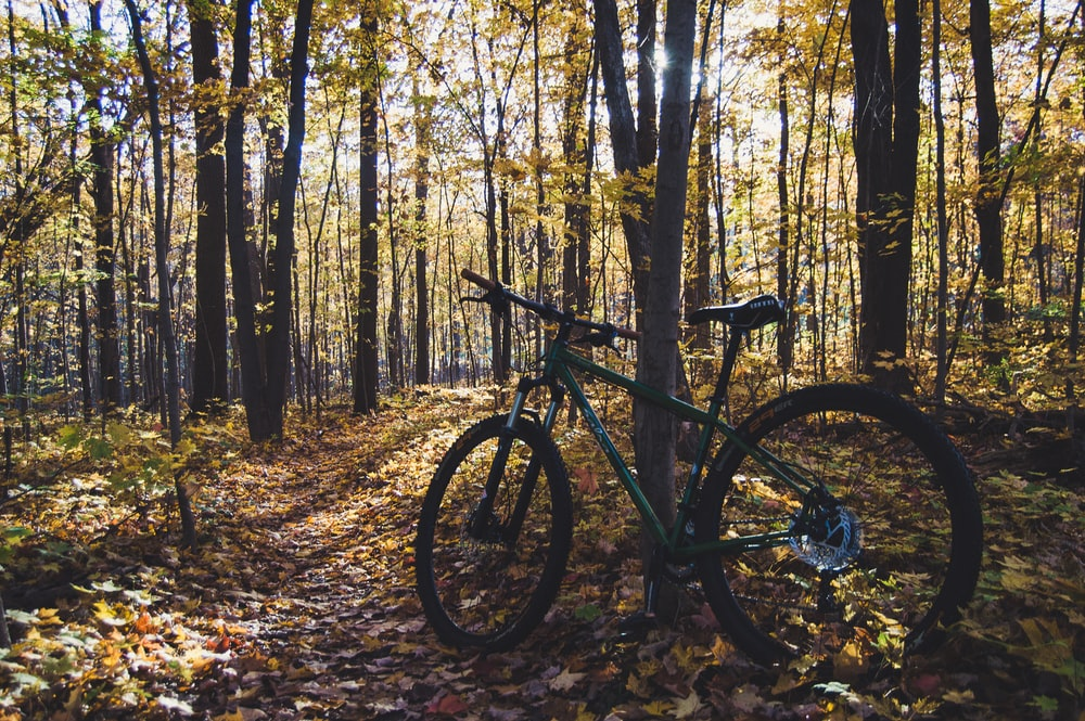 black mountain bike on forest during daytime