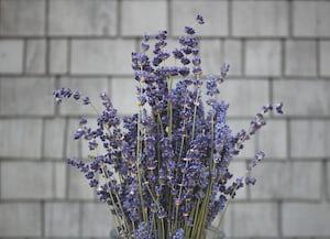 3912. Virágok