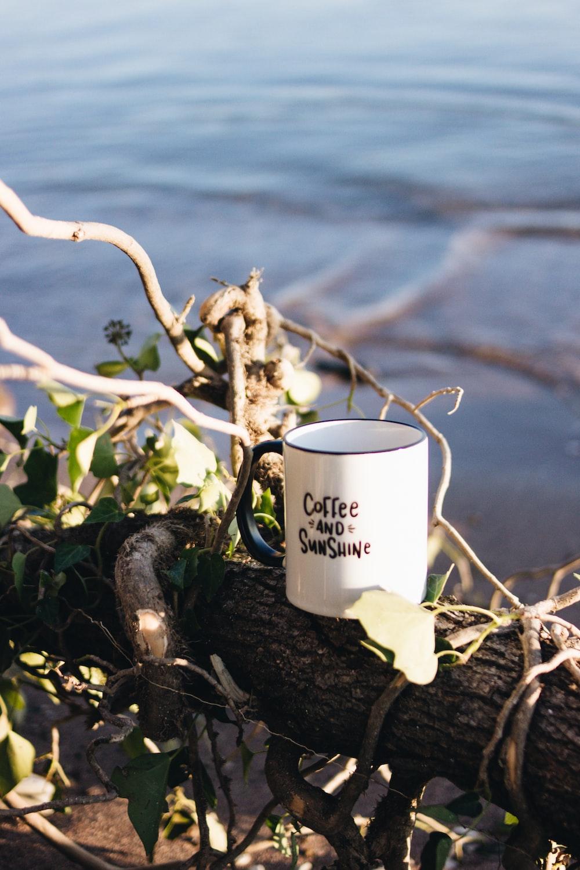 white ceramic mug on brown wooden stick