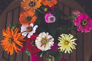3935. Virágok