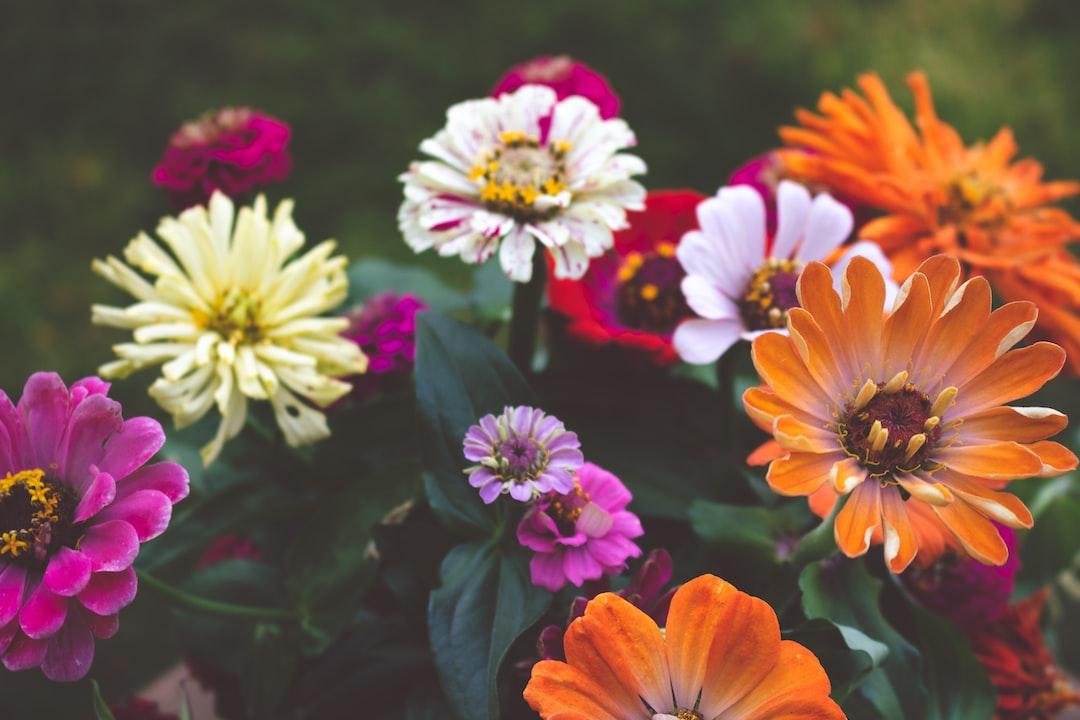 3872. Virágok