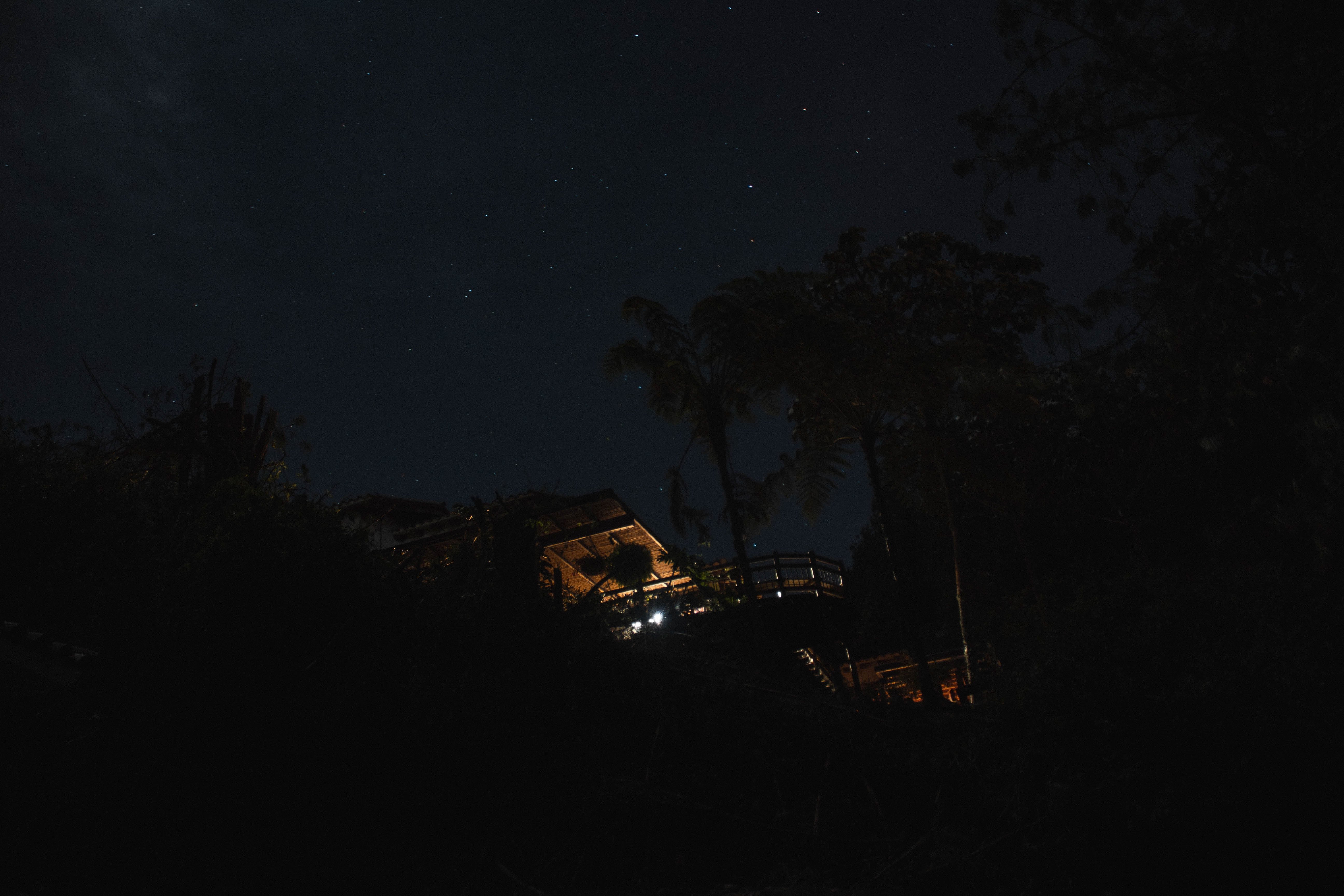 house beside trees during nighttime