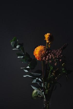 3879. Virágok