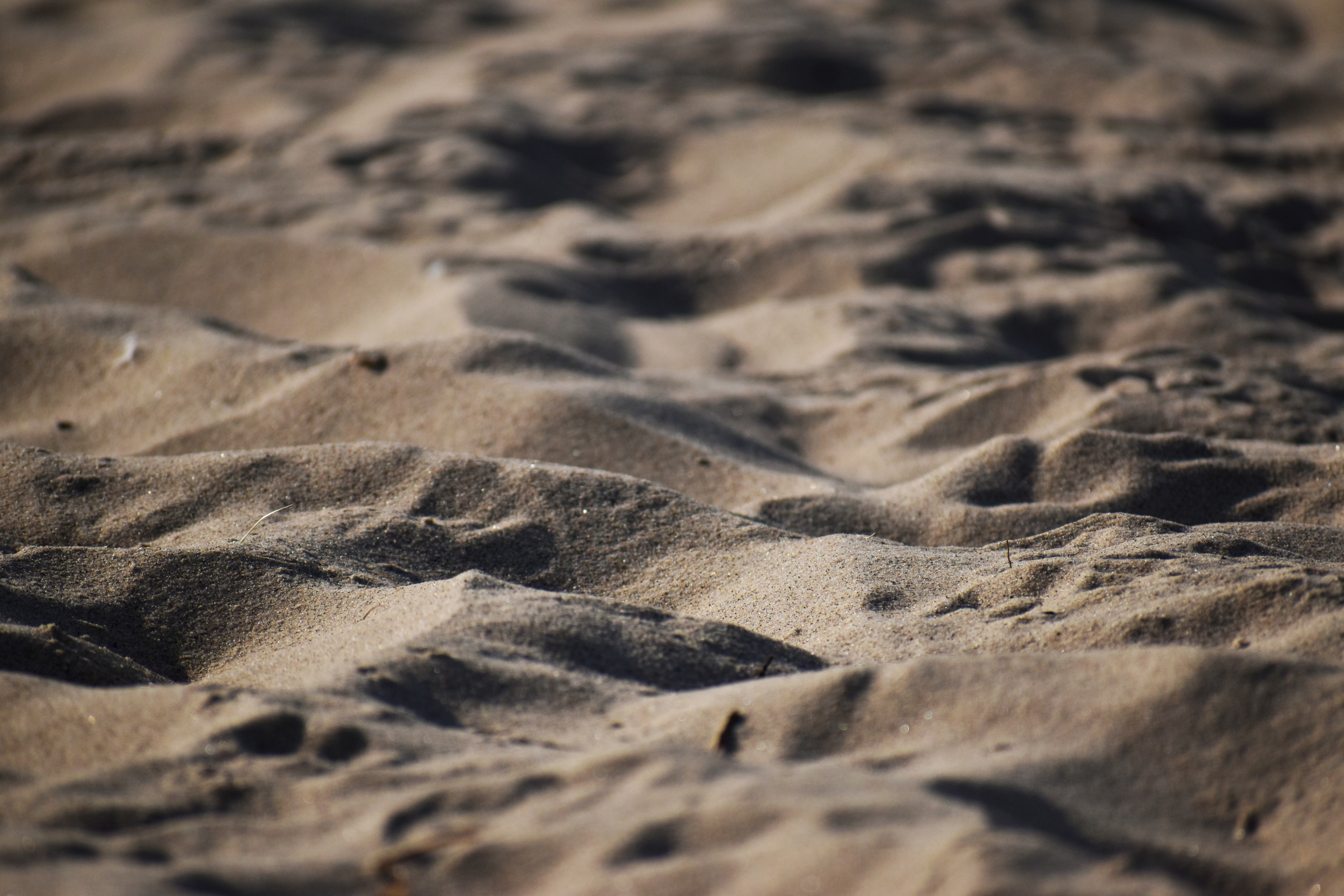 close up photo of sand