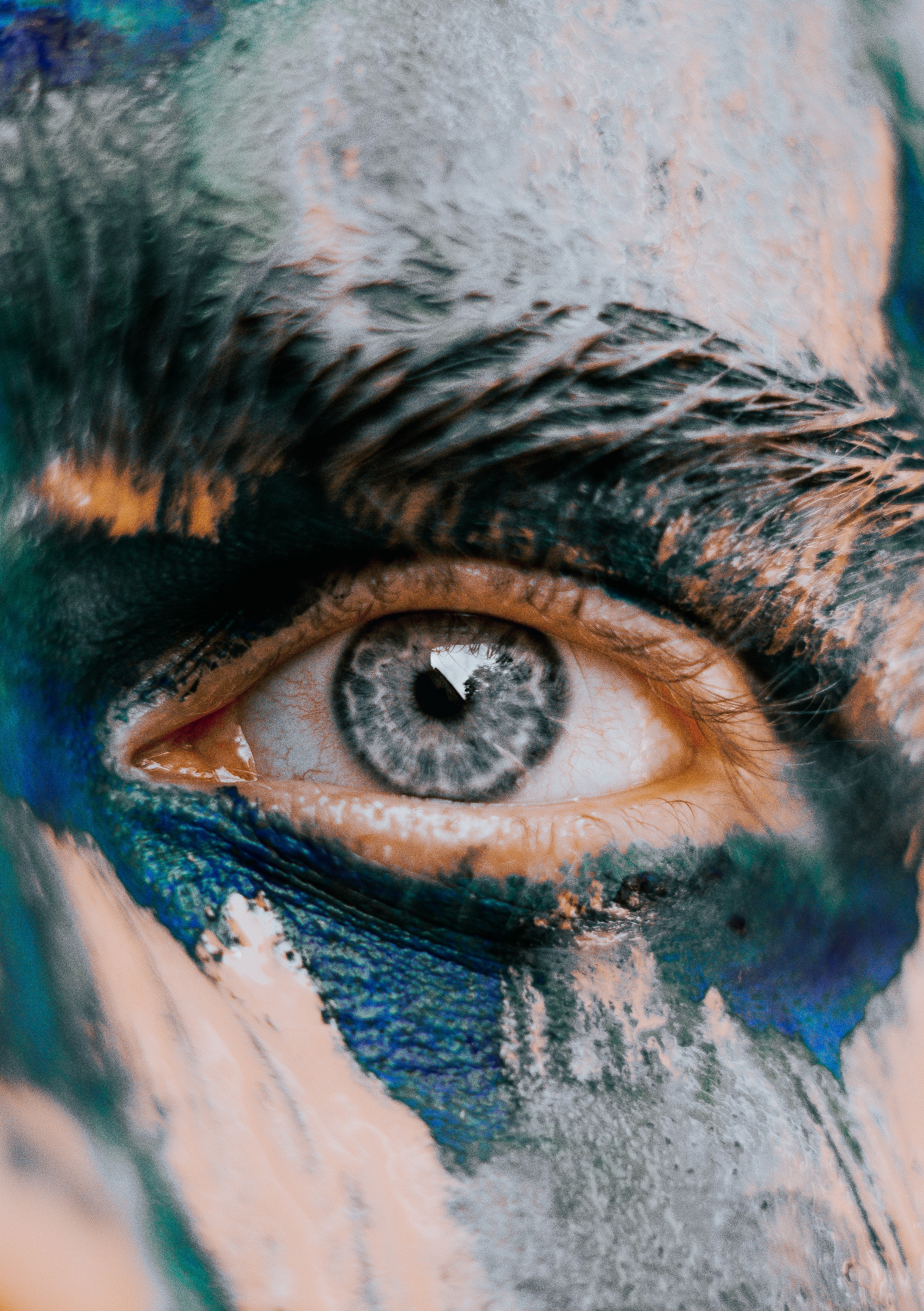 shallow-focus photography of man eye