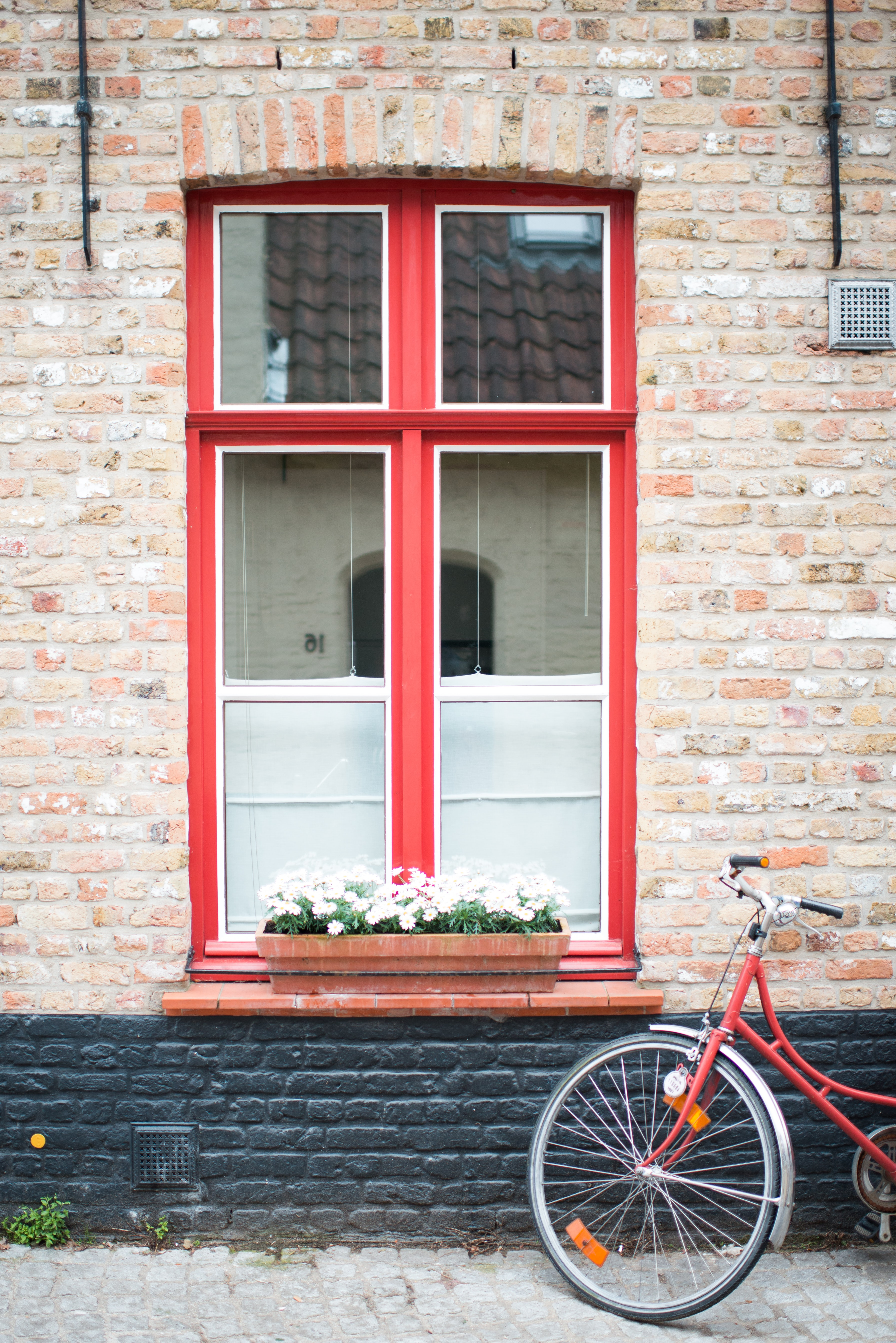 red and white wooden framed window with potted flowers