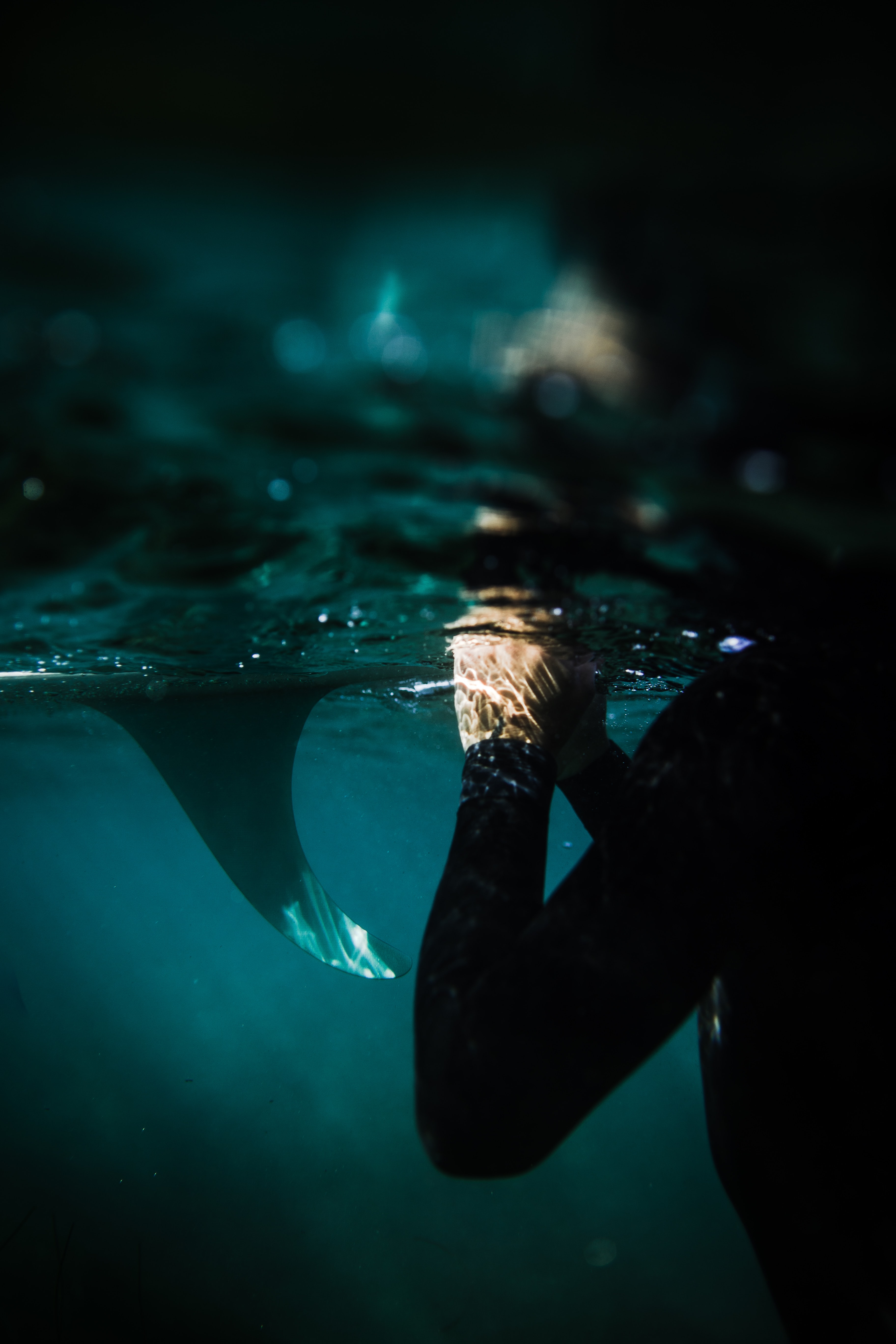 underwater photography of person submerged in water