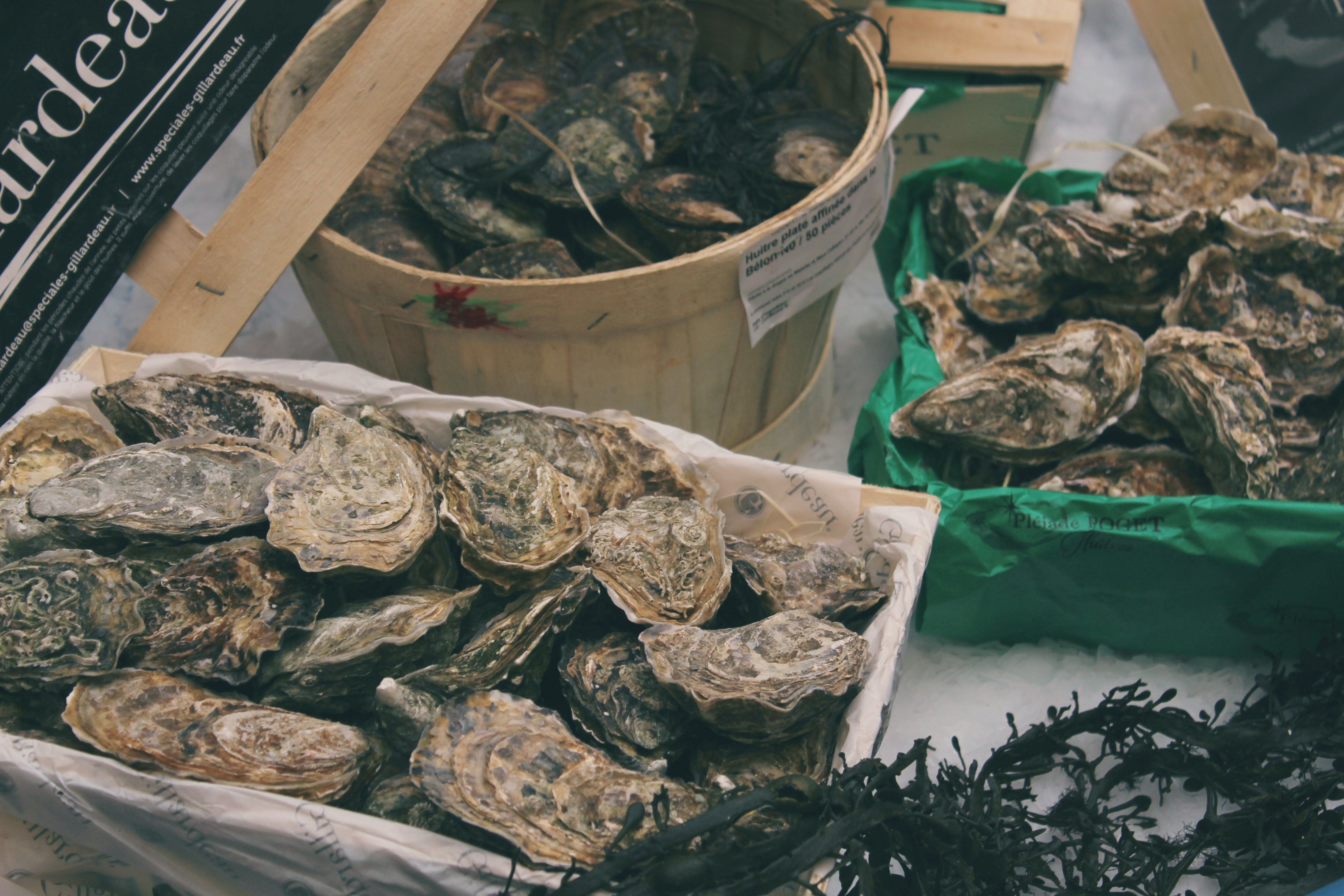 oysters on bucket and tray