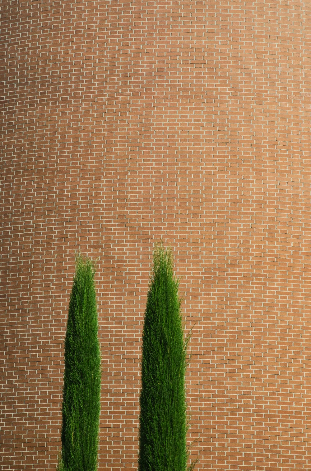 brown and green textile