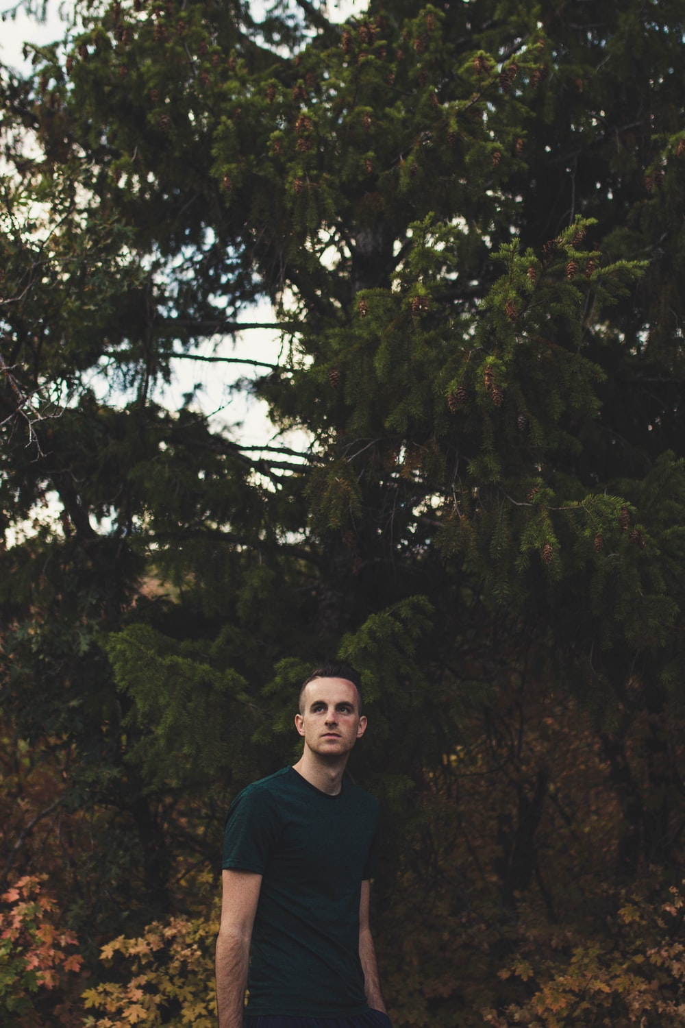 man standing front of green trees at daytime