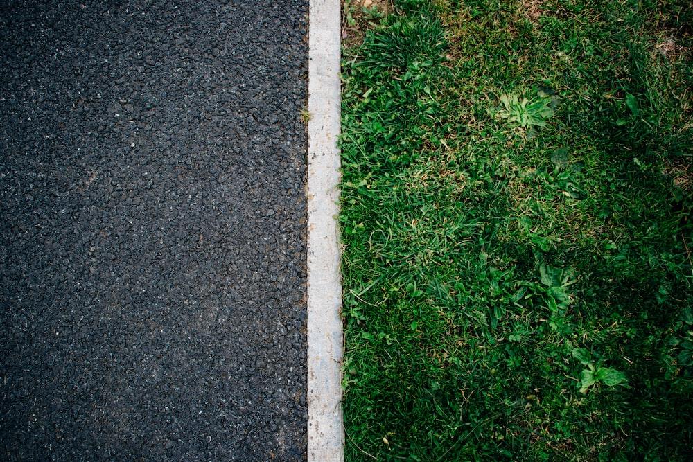 green grass near the gray road