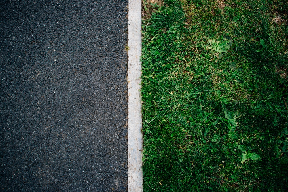 green grass near the gray road
