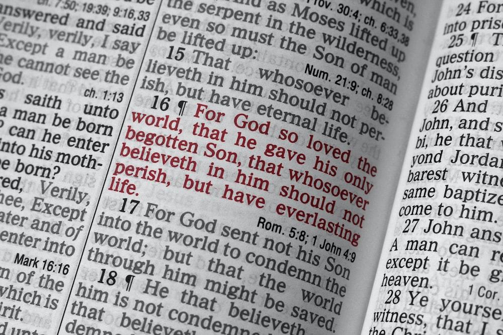 opened Bible