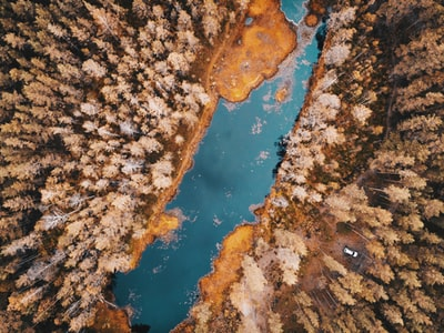 bird's eye view photography of body of water between trees