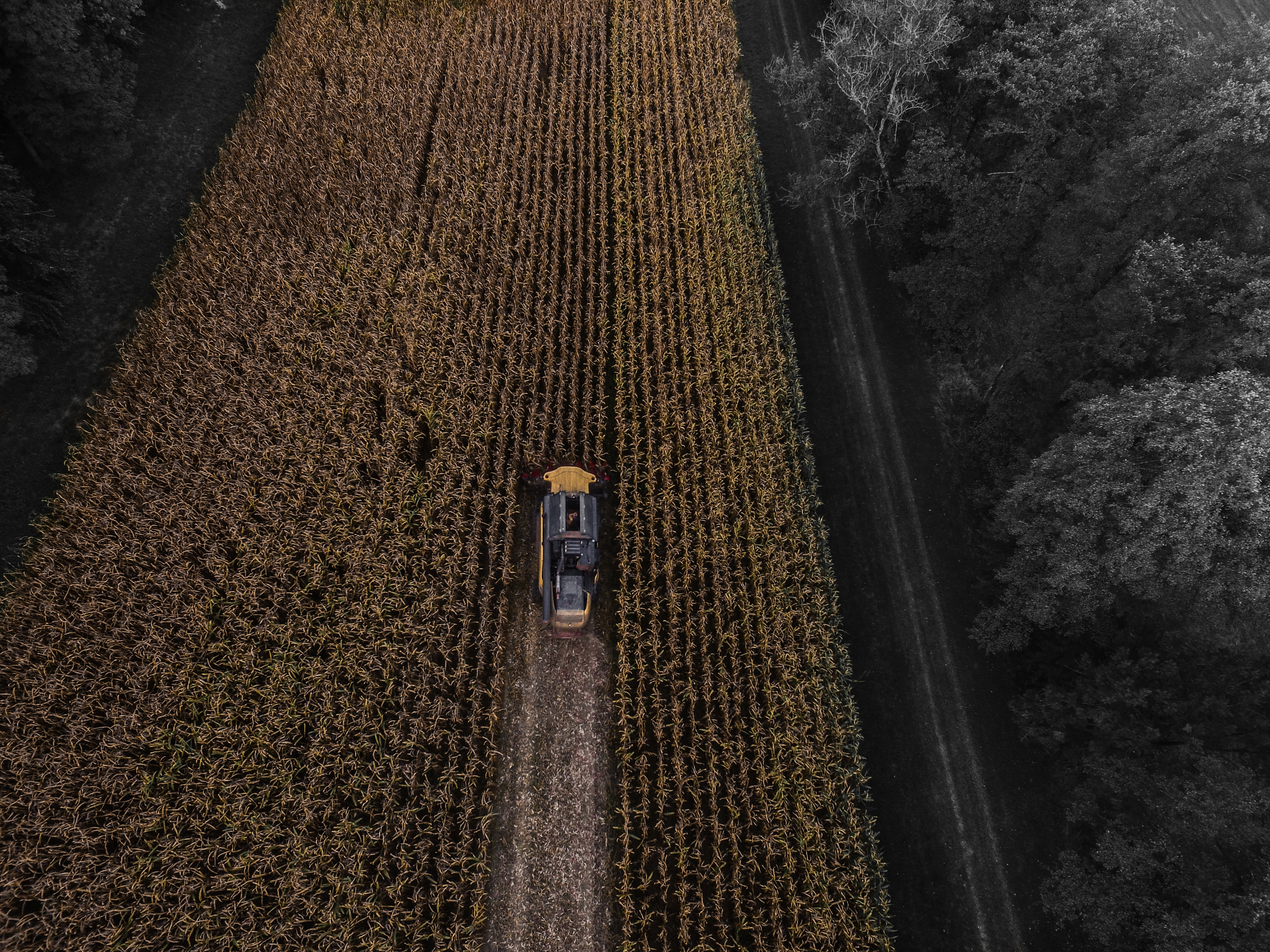 yellow and black truck on field aerial photography