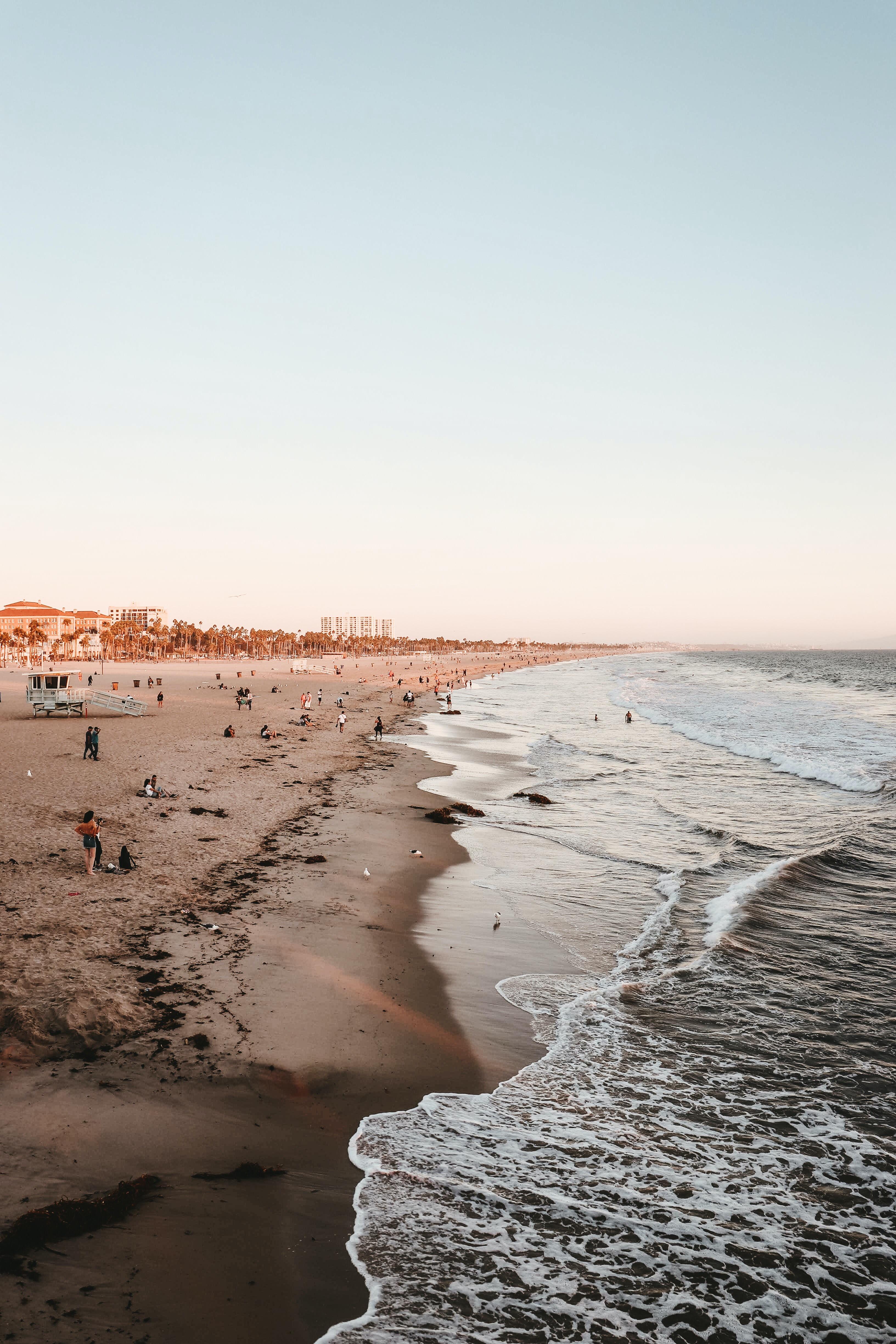 people on seashore near sea at daytime