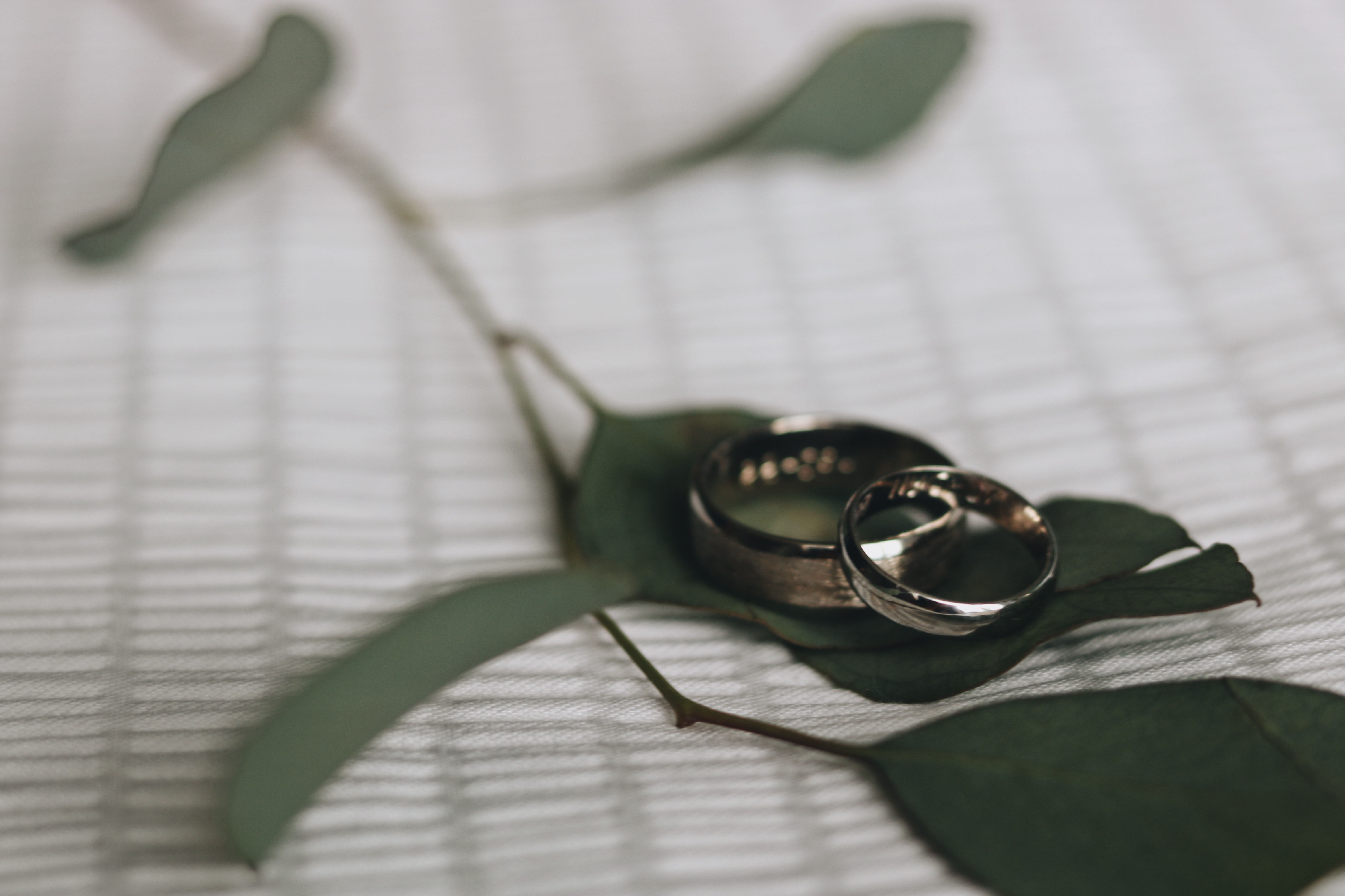 two silver-colored wedding bands