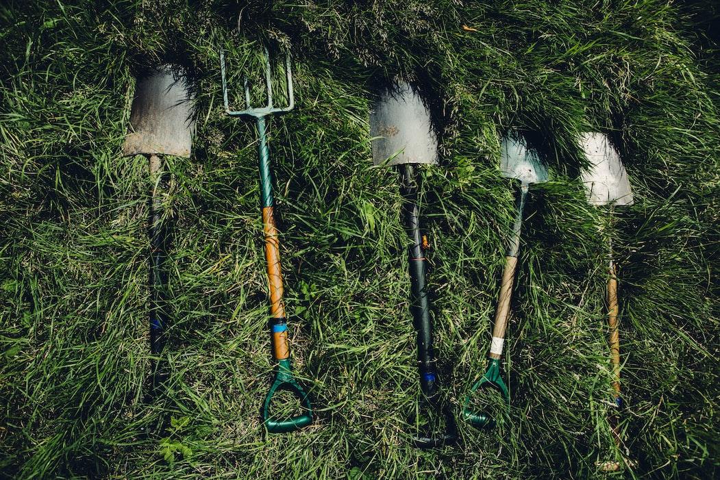 19 Fun Garden Ideas That Will Make Your Kids Love Outdoors