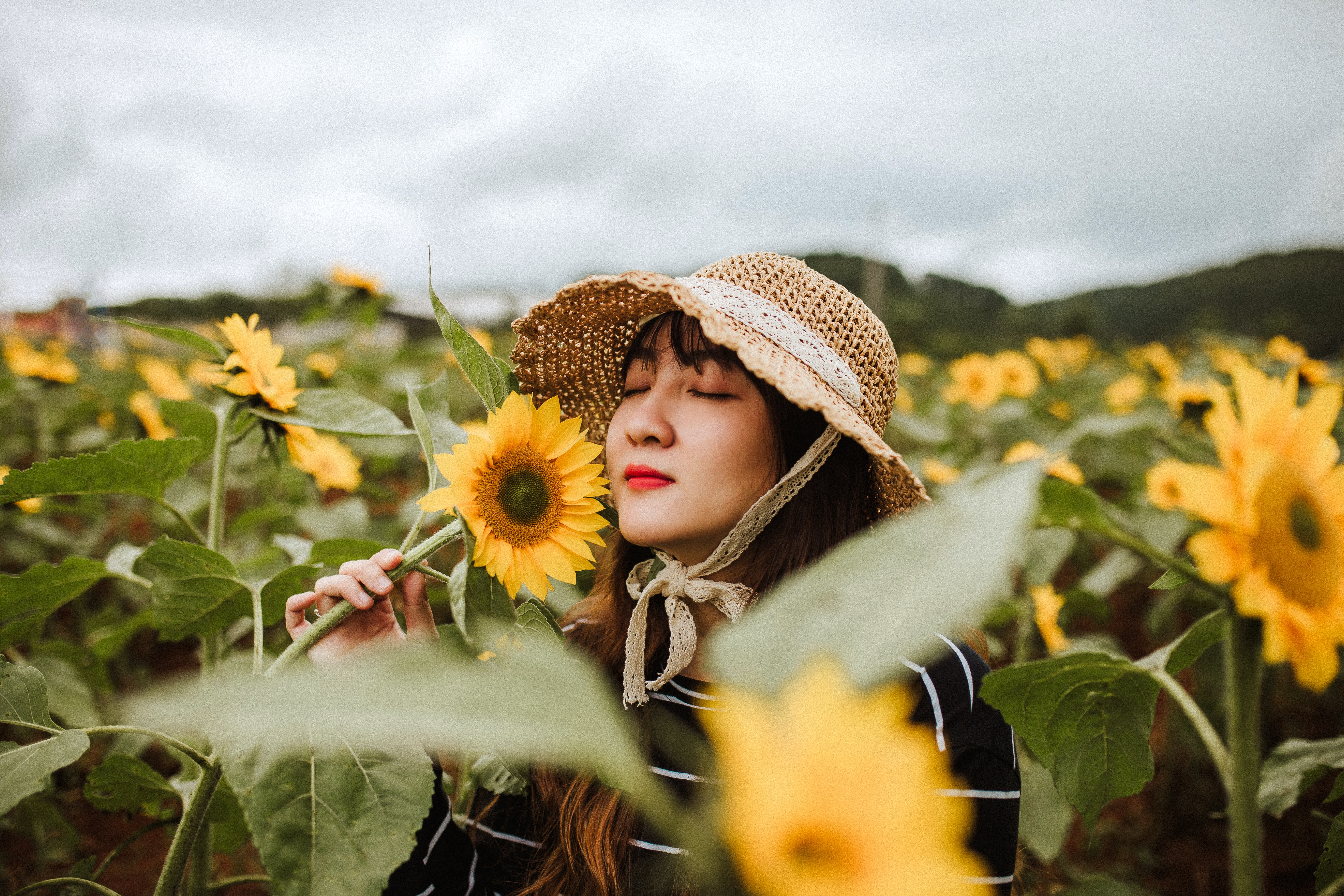 woman in sunflower field smelling sunflower