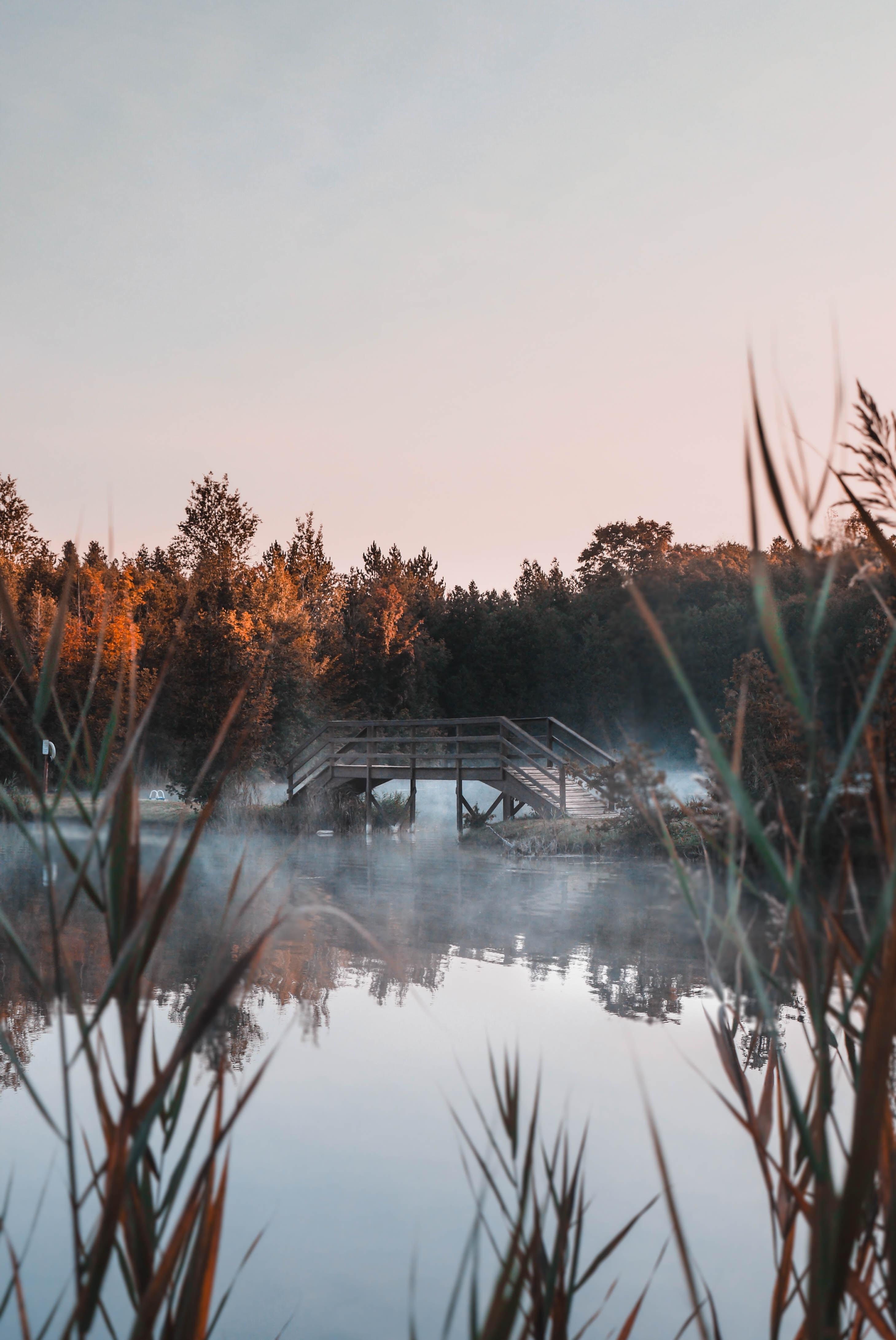 gray concrete bridge beside body of water during daytime