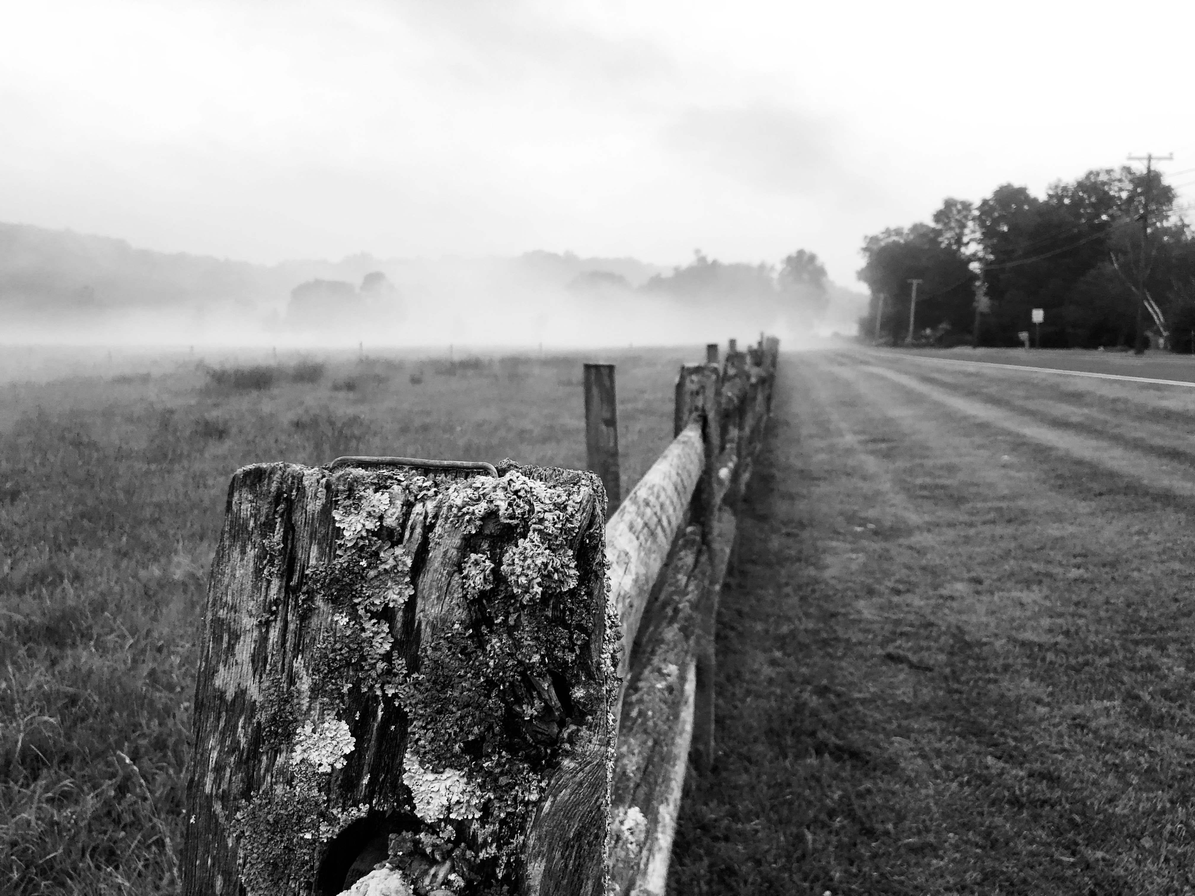 greyscale photography of wooden fence