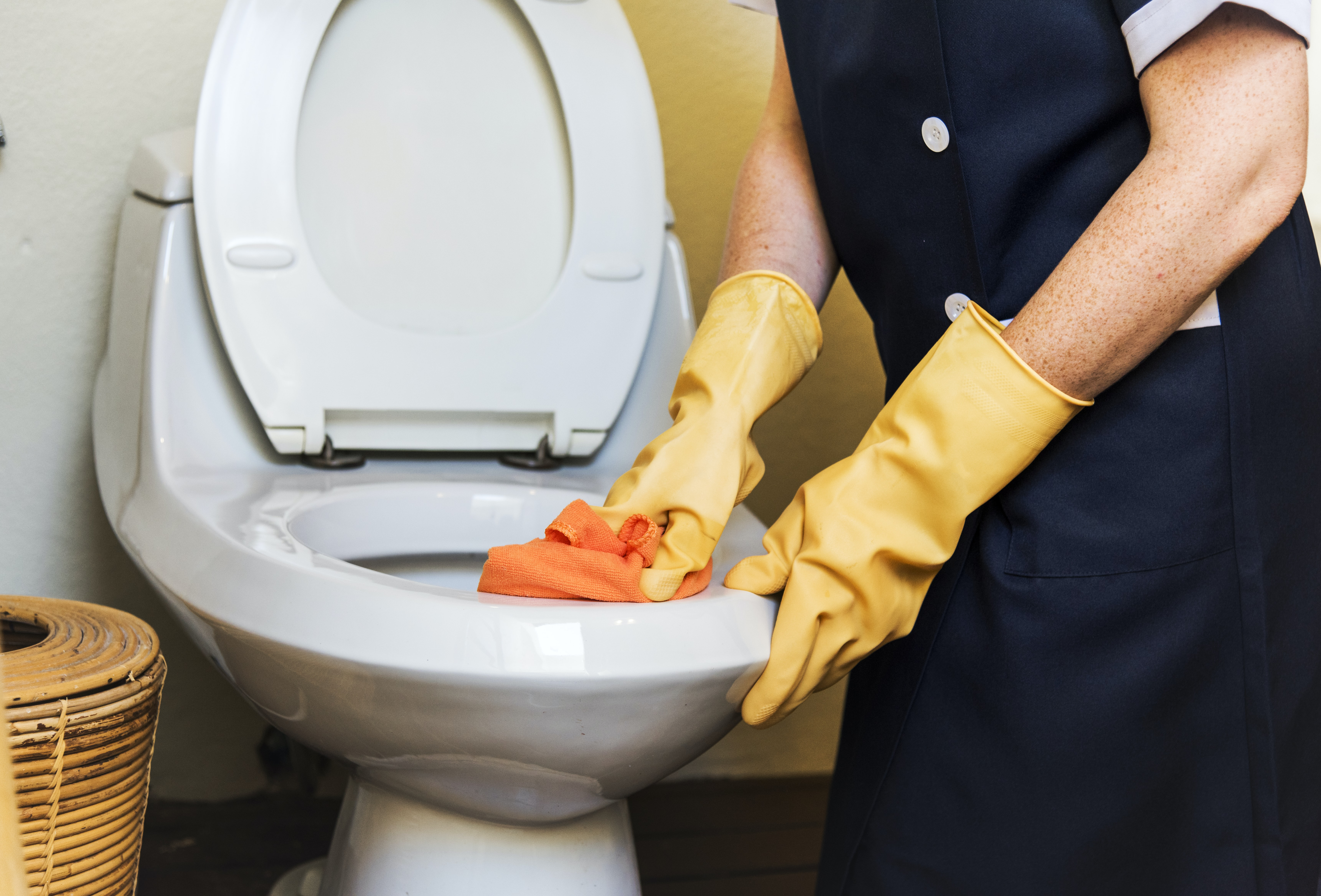 person scrubbing white ceramic toilet bowl