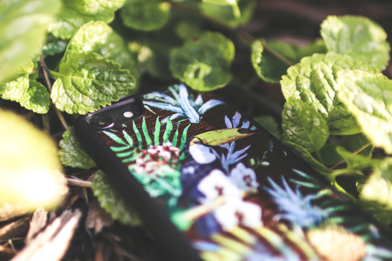 multicolored smartphone on green leafy plant