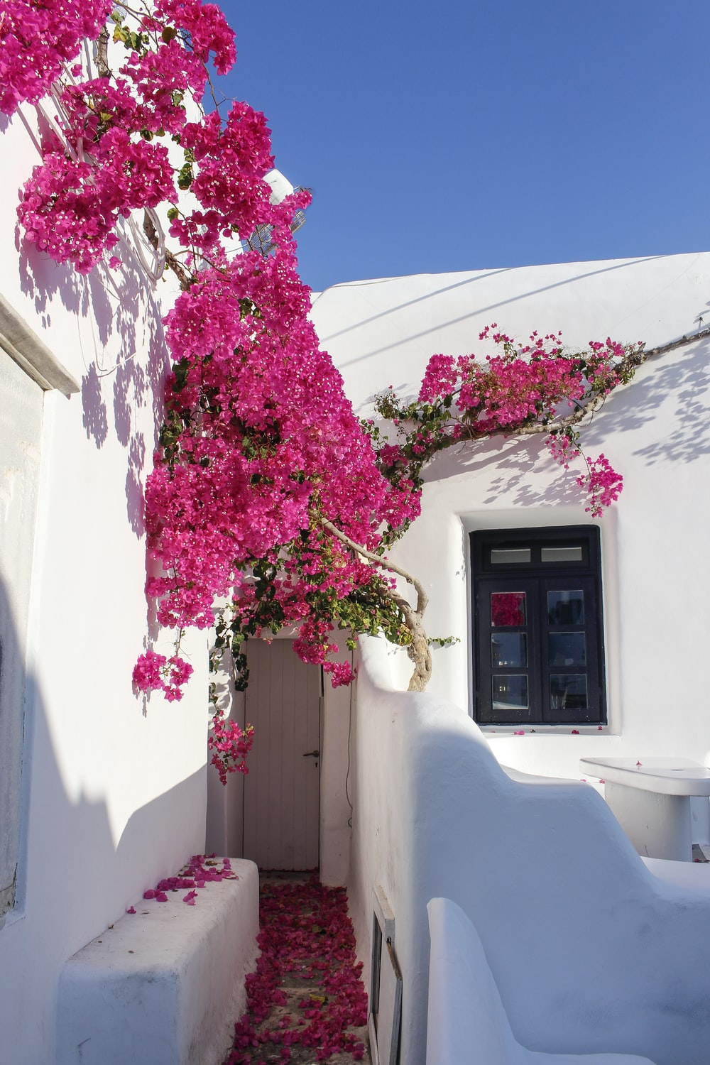white-painted house
