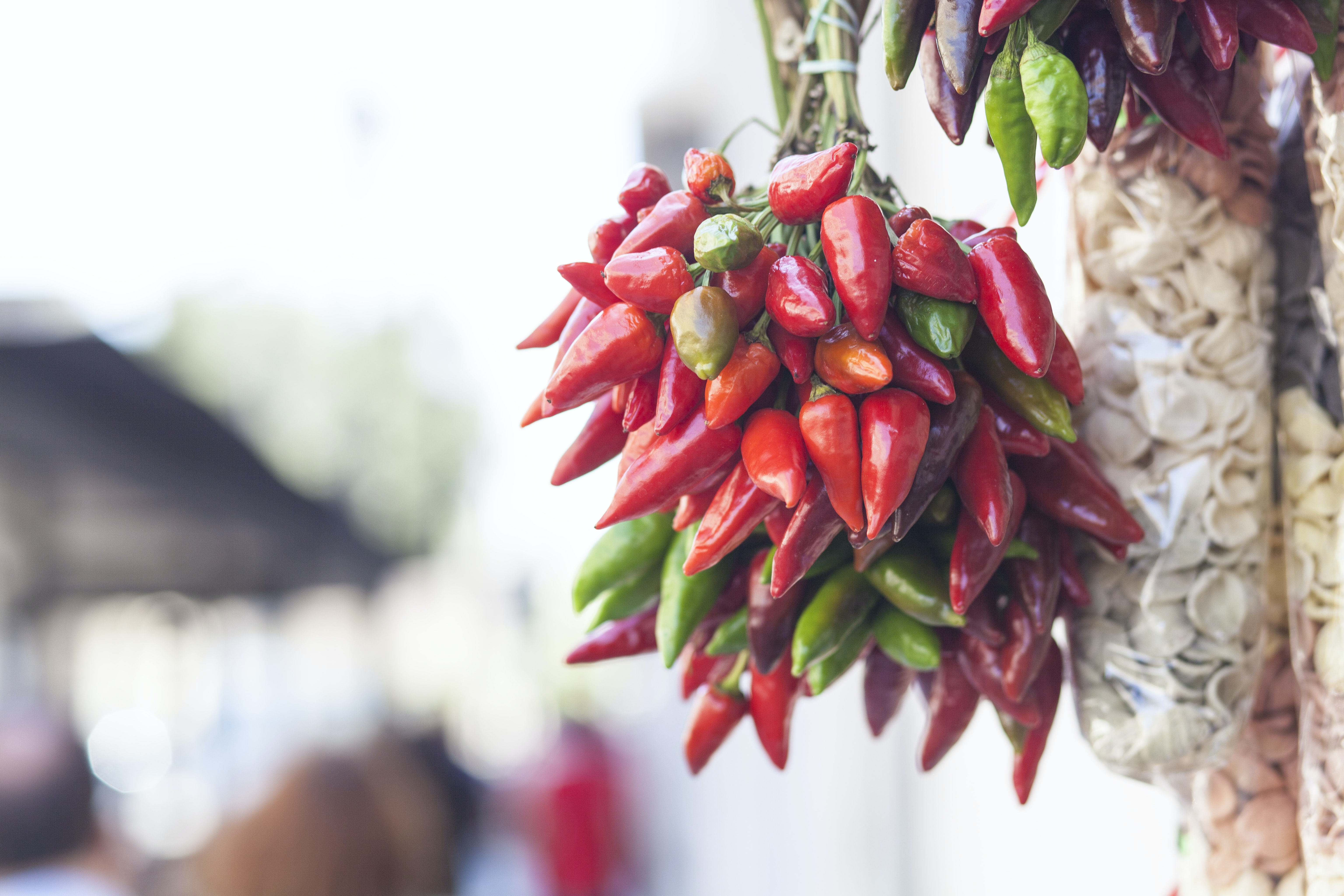 bundle of red and green chili peppers