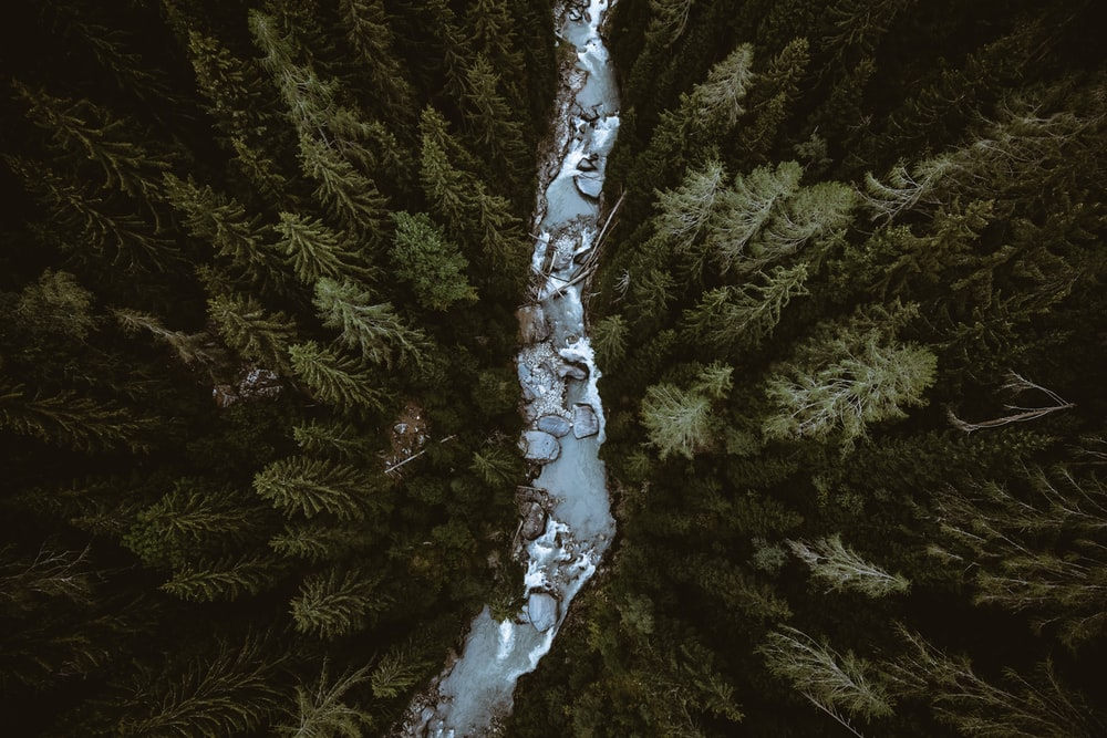 Wallpaper For Laptop Nature