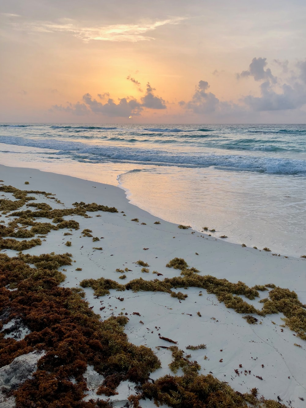 gray sand near sea during sunset