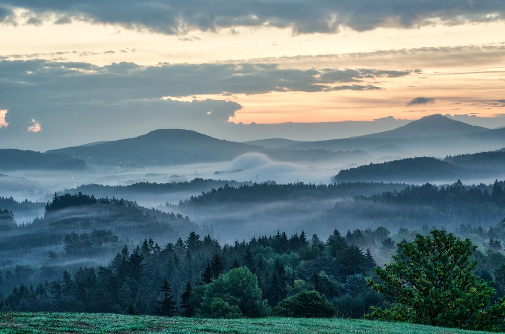 landscape photography of mountains surrounded with trees
