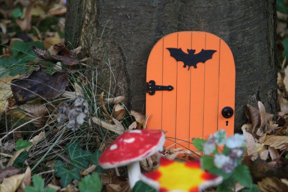orange door in tree near mushrooms