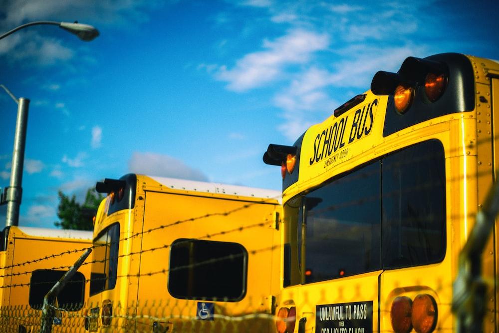 three yellow school bus at daytime