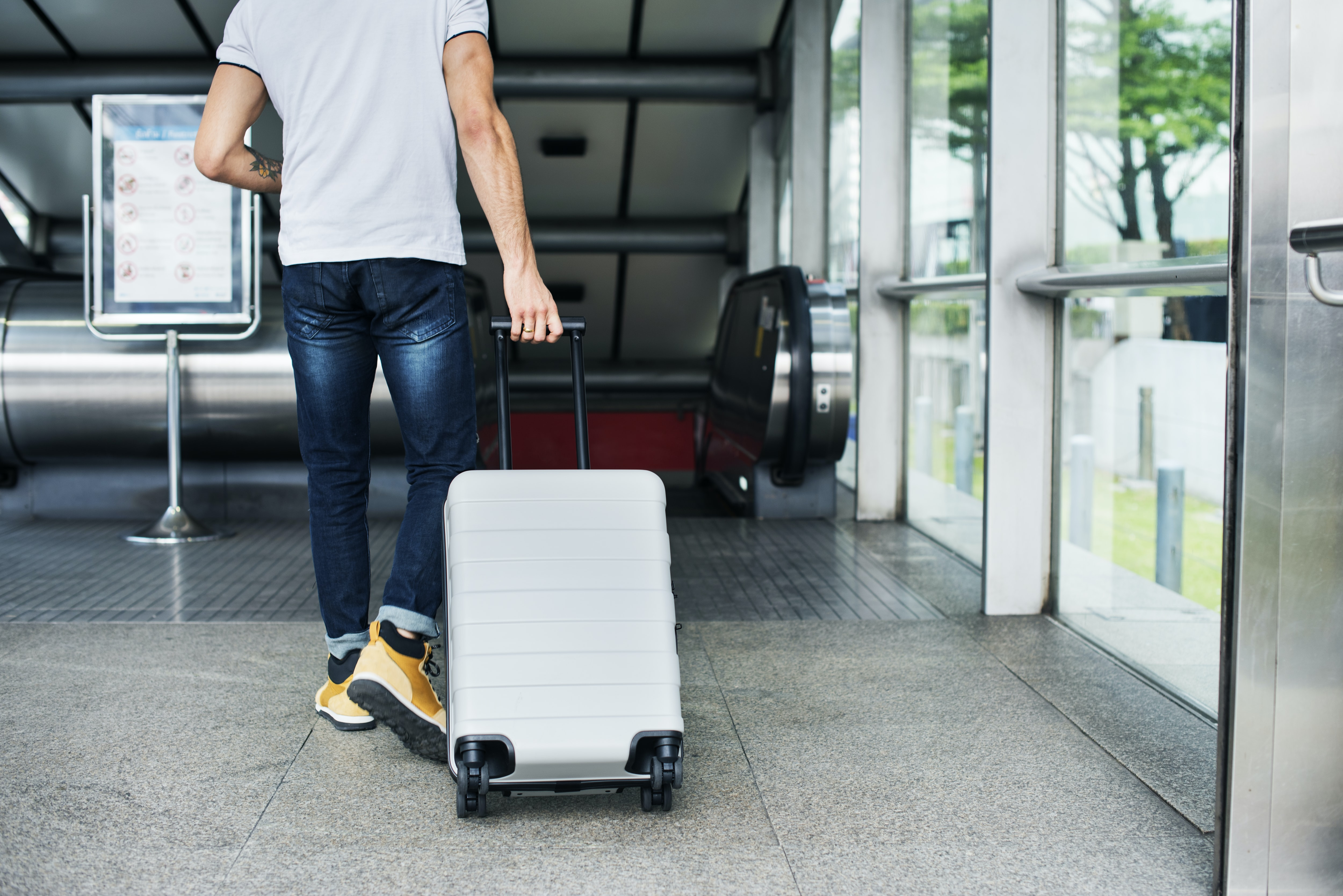 The Essential Laws of Luggage Explained