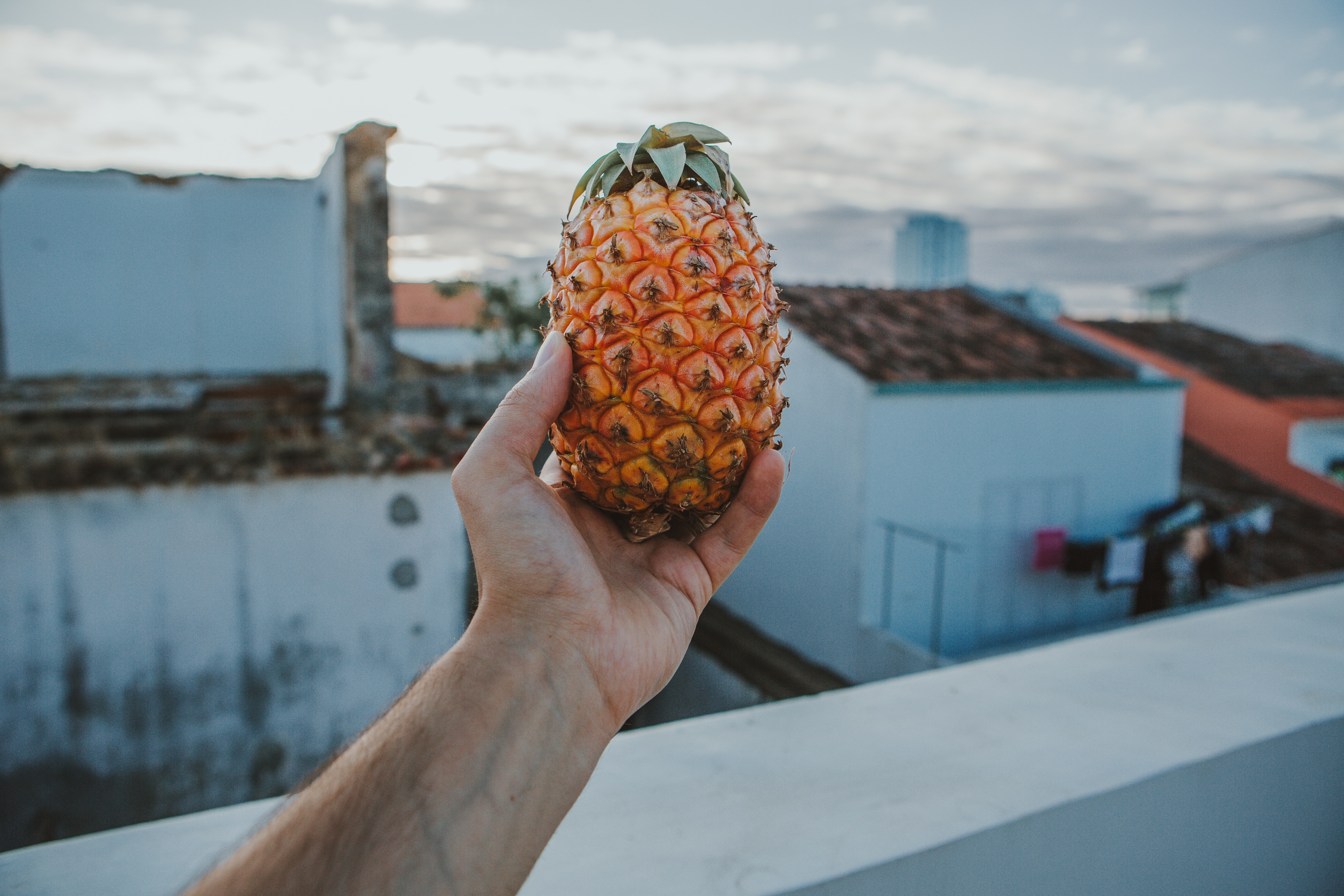 person holding pineapple
