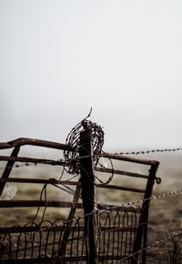 Countryside gate in the fog