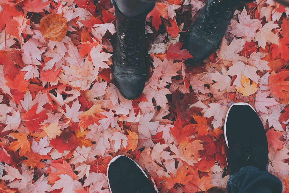 two persons standing on maple leaves