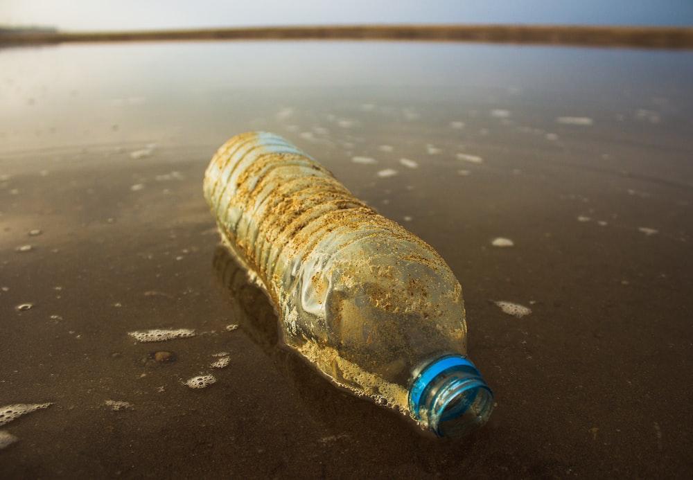 clear plastic bottle in body of water