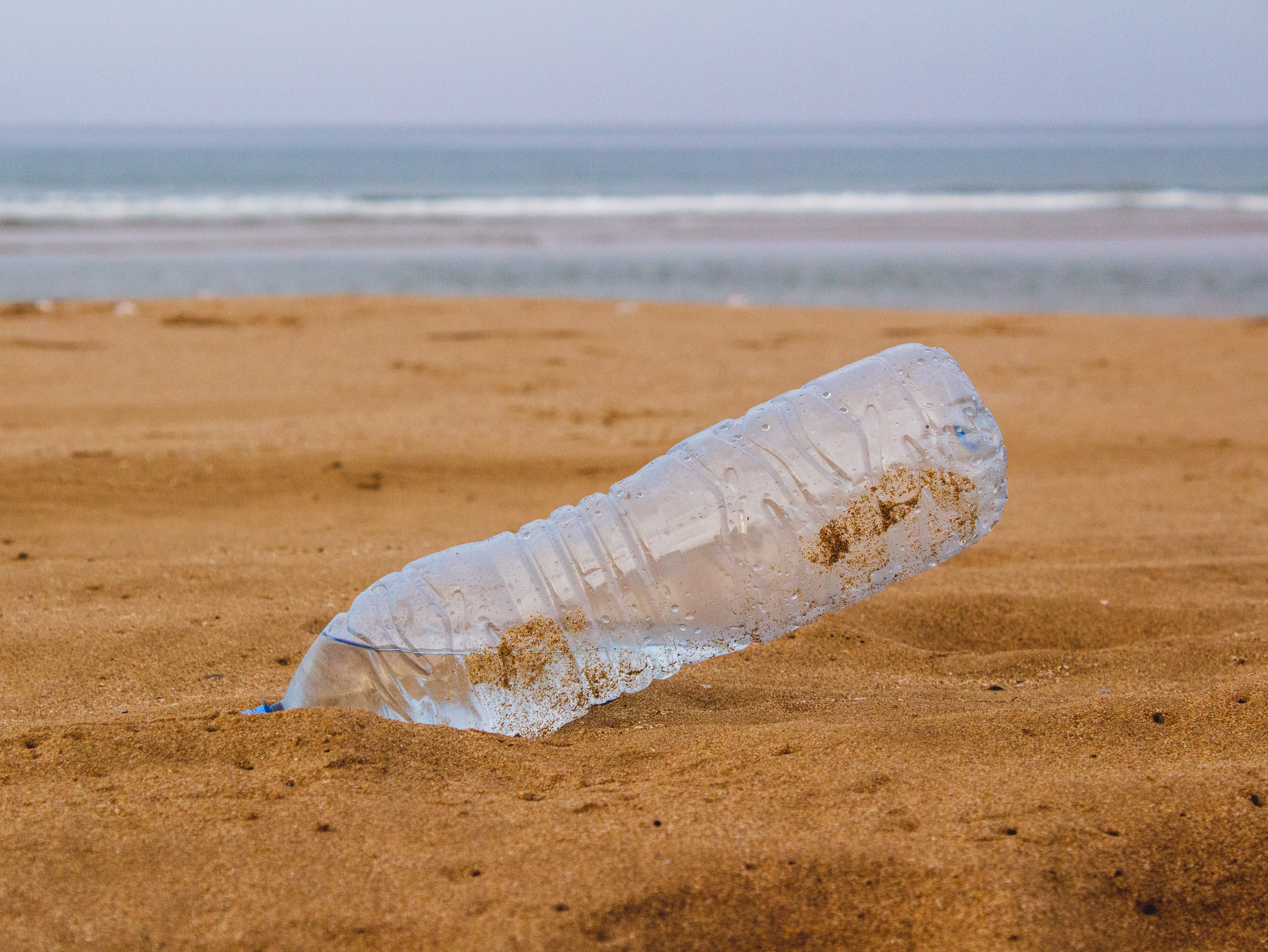 clear bottled water on beach