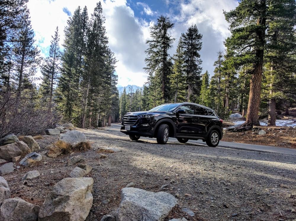 black Hyundai Santa Fe parked on road with trees nearby