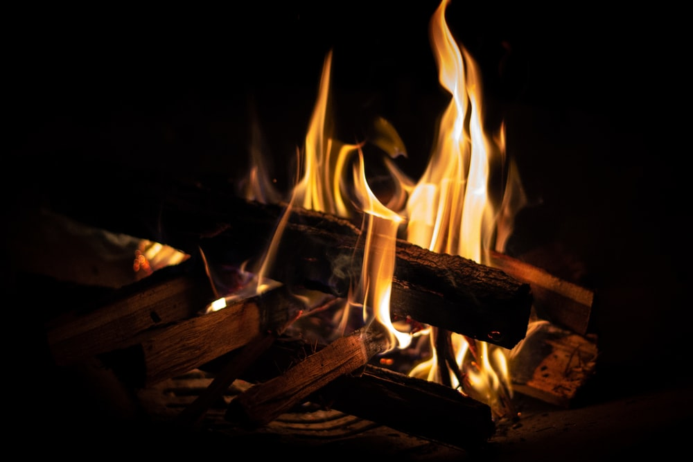 firewood in flame